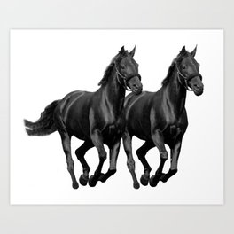 The Black Stallion Art Print
