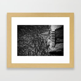 Stares to the water  Framed Art Print