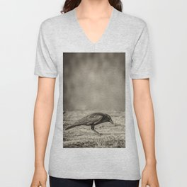 Curious Crow Unisex V-Neck