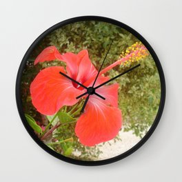 Beautiful Red Hibiscus Flower With Garden Background Wall Clock
