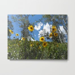 Flowers on the Mountainside Metal Print