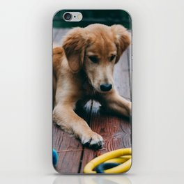 Harvey iPhone Skin