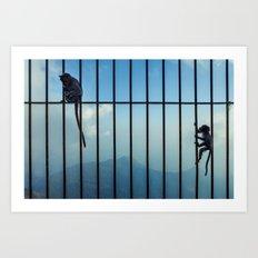 India - Monkey bars Art Print