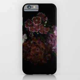 Sweet William iPhone Case