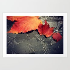 First Frost is Coming soon Art Print