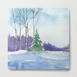 Winter scenery #9 Metal Print