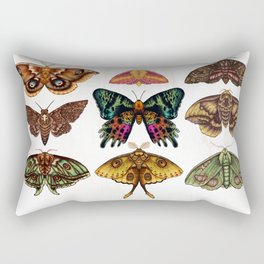 Moth Wings III Rectangular Pillow