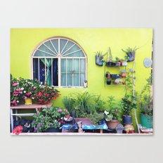Mexican Yard Canvas Print