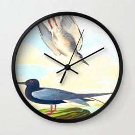 Black Tern Wall Clock