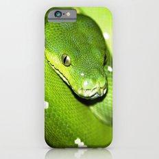 Green Python Portrait 3 iPhone 6s Slim Case