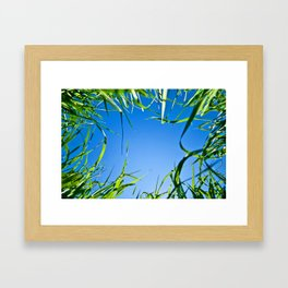 Up in the sky Framed Art Print