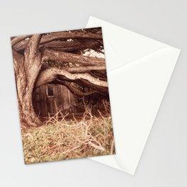 CALIFORNIA POINT LOBOS RESERVE NARA 543198 Stationery Cards