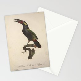 Natural history of birds of paradise Stationery Cards