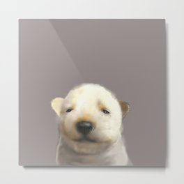 Jindo puppy runny nose Metal Print