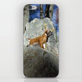 King of the Mountain iPhone Skin
