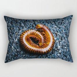 Millipede in Ayutthaya Rectangular Pillow