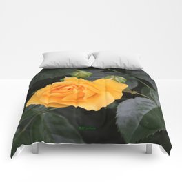 "A Rose Named ""Julia Child"" Comforters"