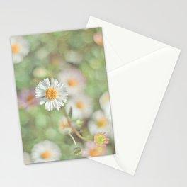 Sunbathing Daisies Stationery Cards