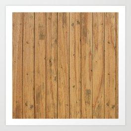Rustic Wood Panel Pattern Art Print