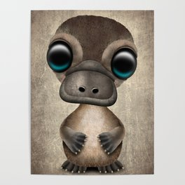 Cute Baby Platypus Poster