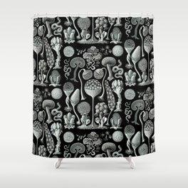 Ernst Haeckel - Mycetozoa (black) Shower Curtain