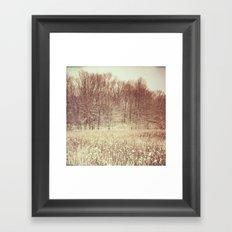 Winter White Framed Art Print