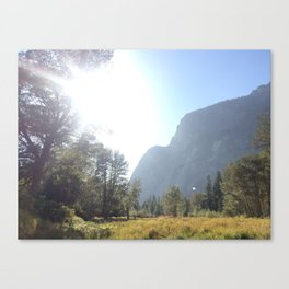 Yosemite Valley Floor Canvas Print