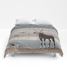 Animal Kingdom 4 Comforters