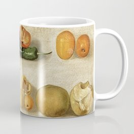 Still Life with Fruit (with Scorpion and Frog) Coffee Mug