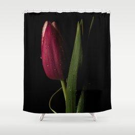 Tulip Details Shower Curtain