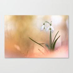 The very breath of spring Canvas Print