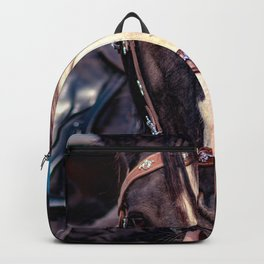 Concept Kaltblutmarkt 2018 : Horse eyes Backpack
