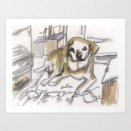 Dog Portrait Series - Butch Art Print
