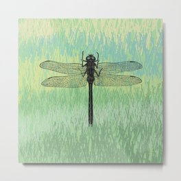 Dragonfly ~ The Summer Series Metal Print