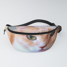 Kitten relaxing in his bed. Fanny Pack