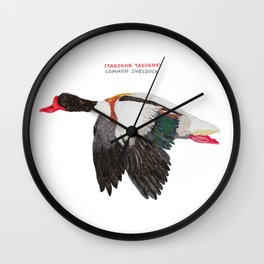 Common shelduck Wall Clock