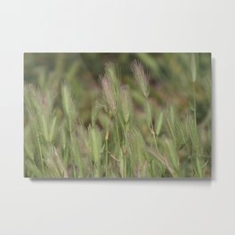 Wild Grass in Sage and Pink Lemonade Metal Print