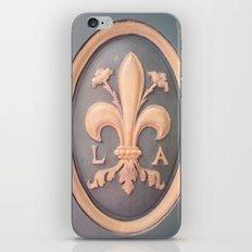 Versallies, France, French wood door iPhone & iPod Skin