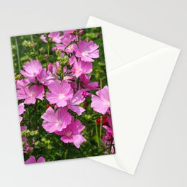 Pink Prairie Mallow Stationery Cards