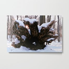 Stumped Metal Print