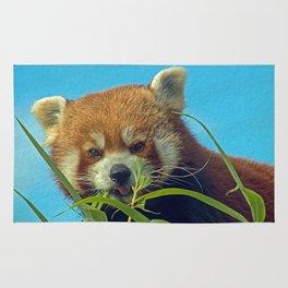 RED PANDA LOVE Rug