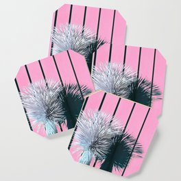 Yucca Plant in Front of Striped Pink Wall Coaster