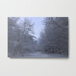 The Ice Queen's Forrest Metal Print