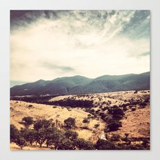 Mexican desert Canvas Print