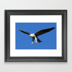 Kite in Flight Framed Art Print