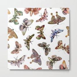 A Multitude Of Moths - Colorful Moth Pattern Metal Print