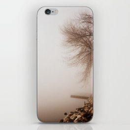 Mystery iPhone Skin