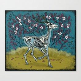 Dead blossom Canvas Print
