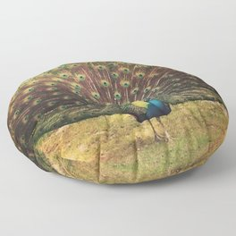 Peacock Feathers Floor Pillow