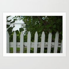 Picket Fence Art Print